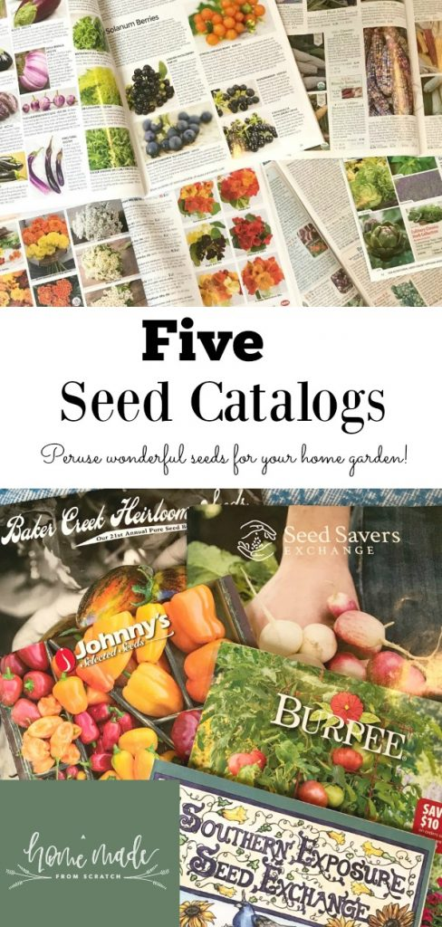 Five great seed catalogs to use to grow your own food from home!