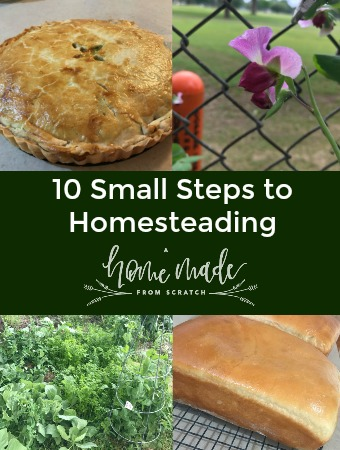 10 small easy to implement steps to homesteading