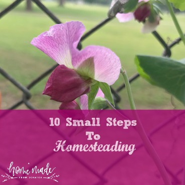 10 Small Easy Steps to Homesteading