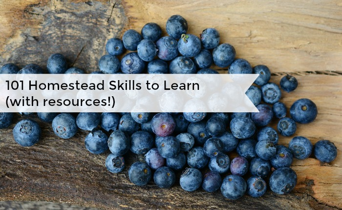 101 Homesteading skills to learn. Working on them over time to be a proficient and self sufficient homesteader