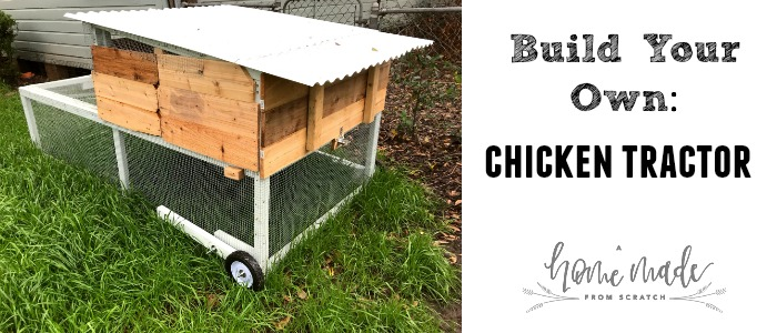 Learn how to build your own chicken tractor. With materials list!