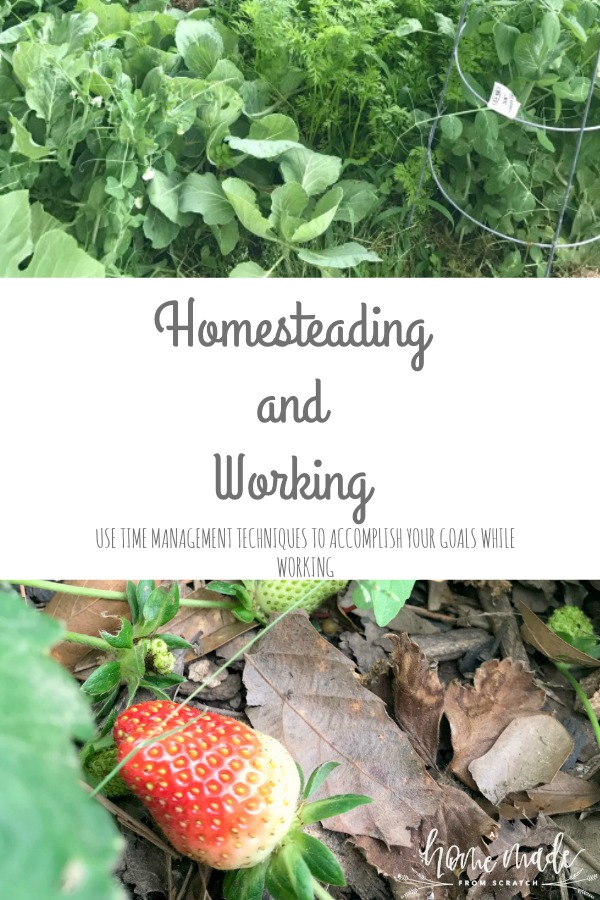 Learn how to use goal planning and time blocking to accomplish your homestead goals while working