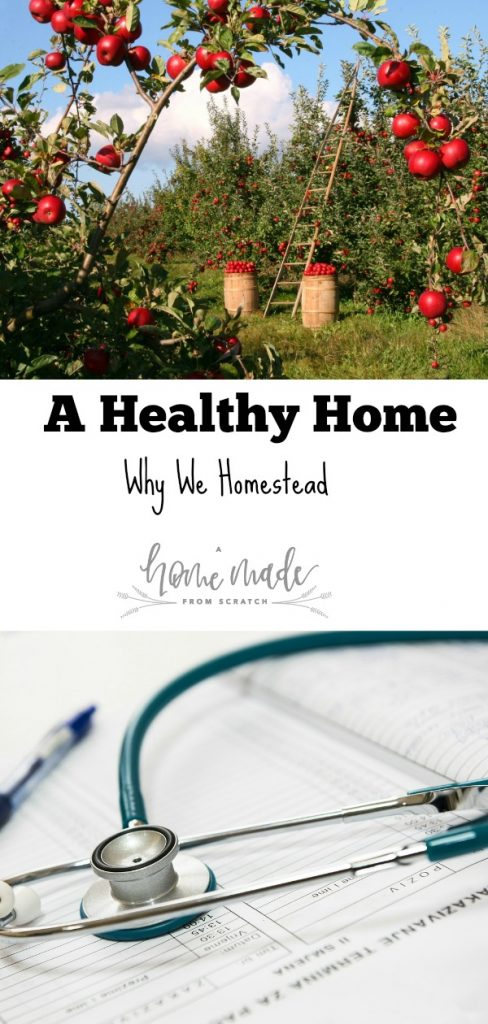Working to make a healthy home, good for the guts and good for the family. Learn why we try to homestead.