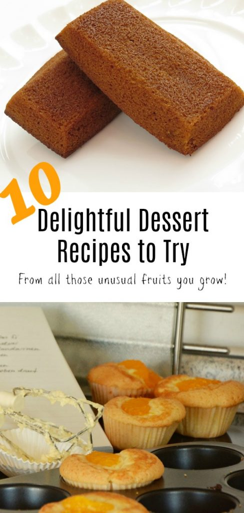 Use up all those fun fruits your growing in these delightful dessert recipes.