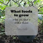 Learn what foods to grow even when easy to grow ones do not work