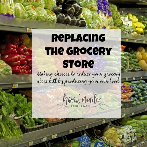 Replacing the Grocery Store