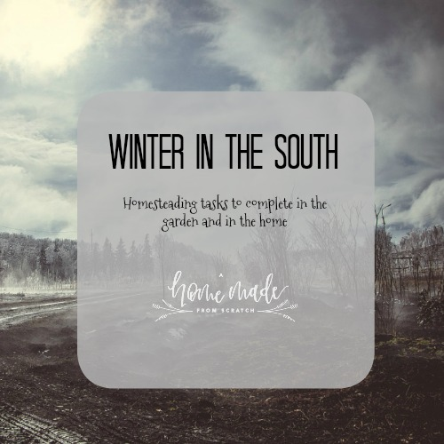 Learn what tasks to complete during the winter on your southern homestead