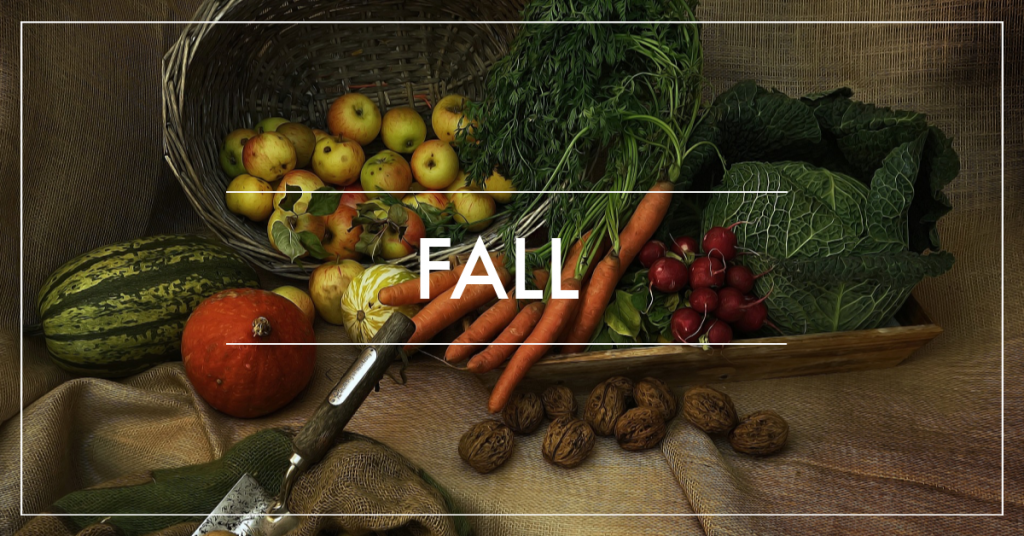 fall in the garden, planting food for a late harvest