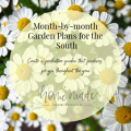 Learn about what tasks to accomplish and when for a productive southern garden