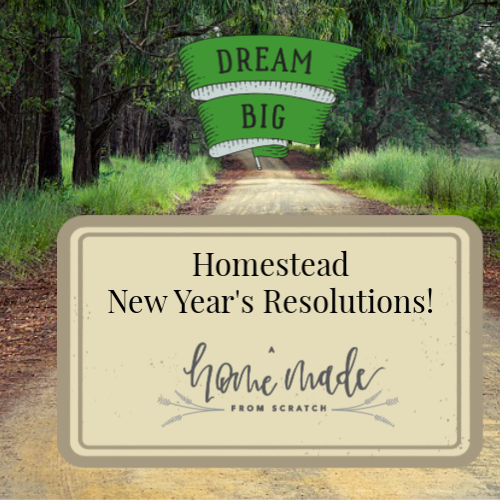 New Year's Resolutions for the homestead are a way to set goals for the new year.