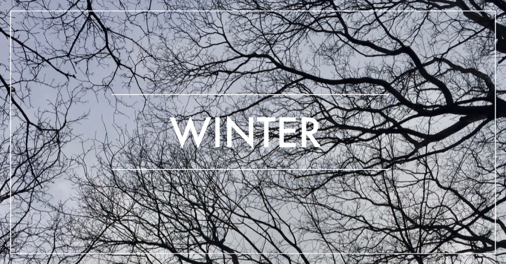 winter time in the garden, what to plant and when