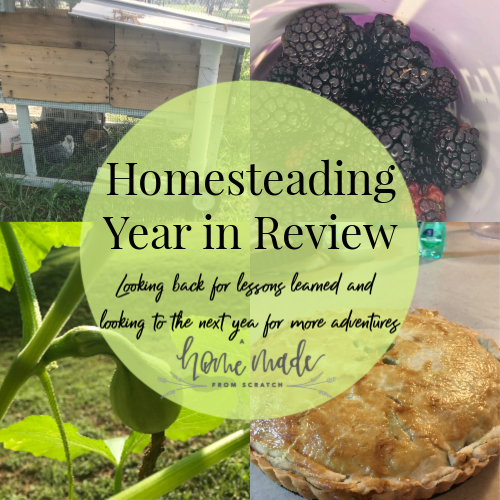 Homesteading: Year in Review