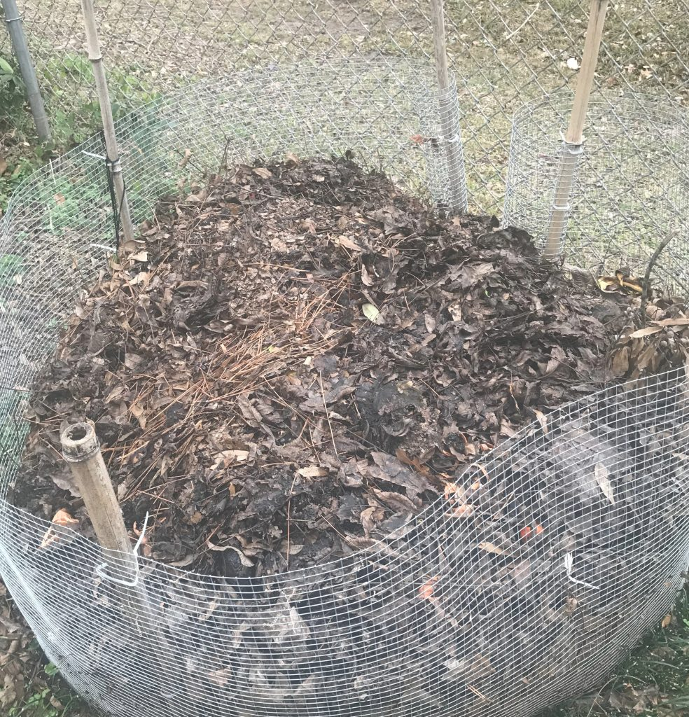 Compost is an easy way to get nutrients into your garden