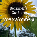The beginner's guide to homesteading.