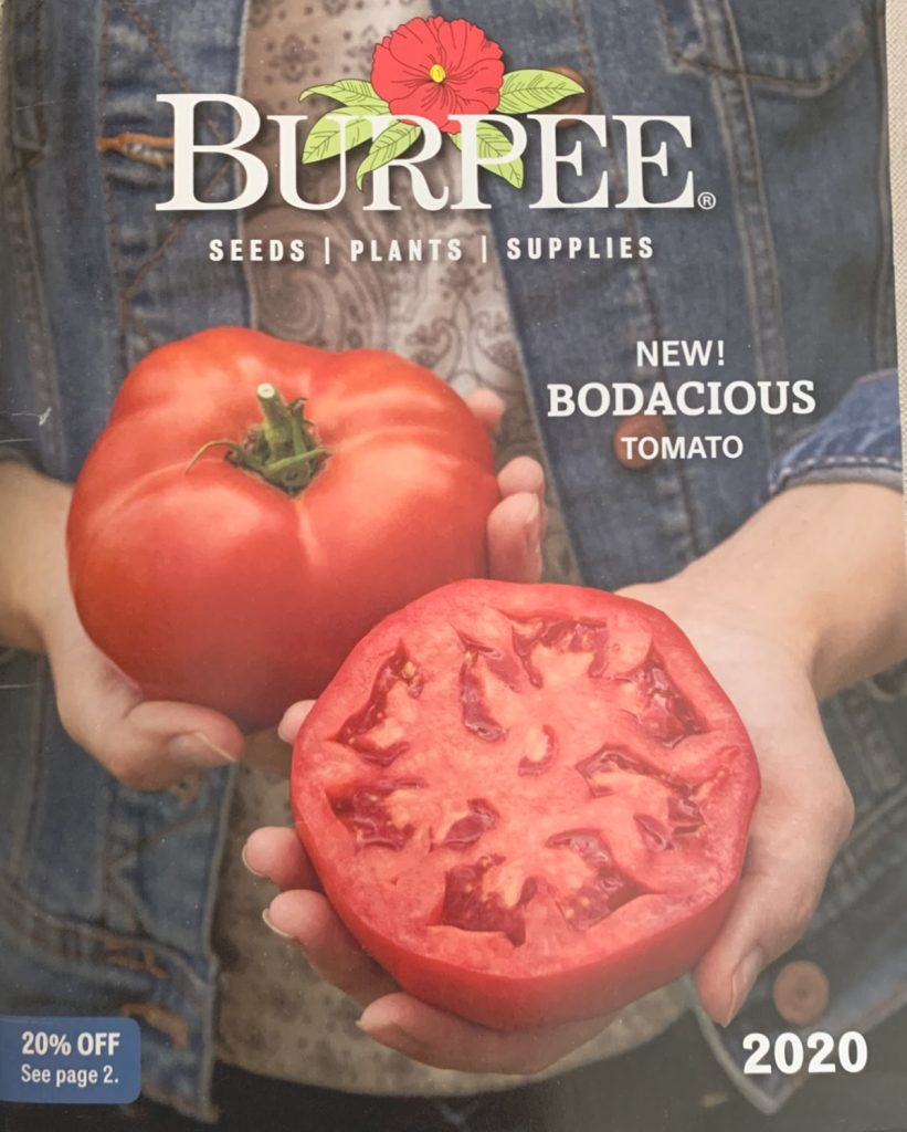 Burpee seeds are a popular variety that have been around a long time