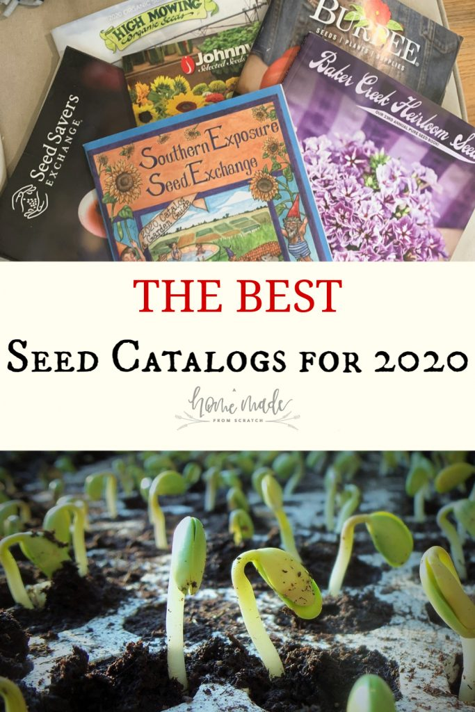 Seed catalogs for 2020