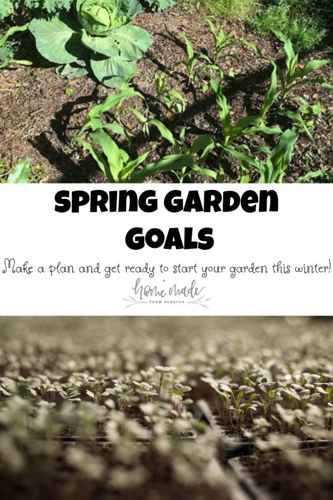Spring garden goals, get started on your garden this winter!